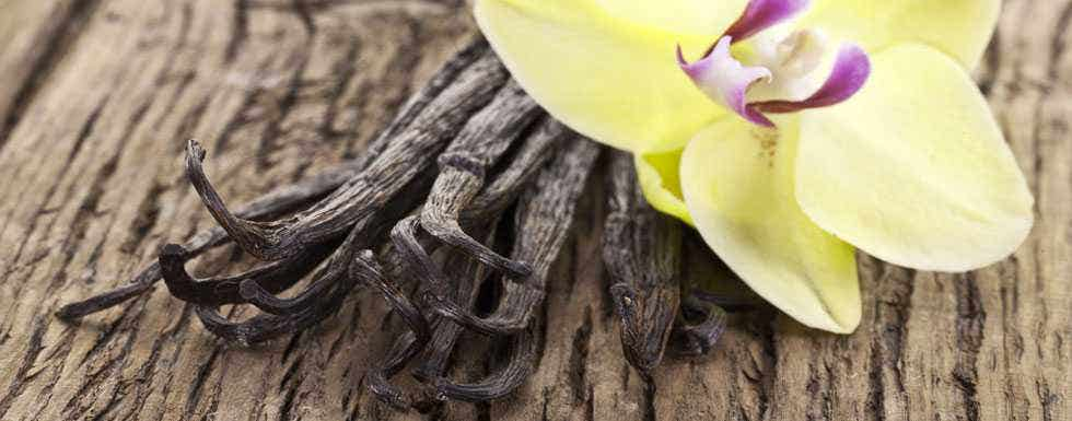 Making Your Own Vanilla Extract is Easy http://healthygoods.com/natural-health-blog/make-your-own-vanilla-extract