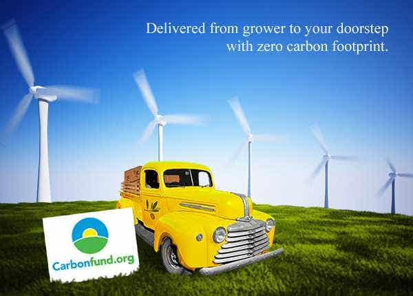 carbon-neutral flat rate shipping of raw organic foods