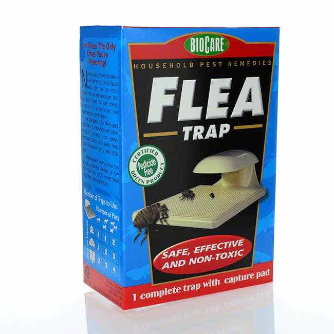 BioCare Lighted Flea Trap