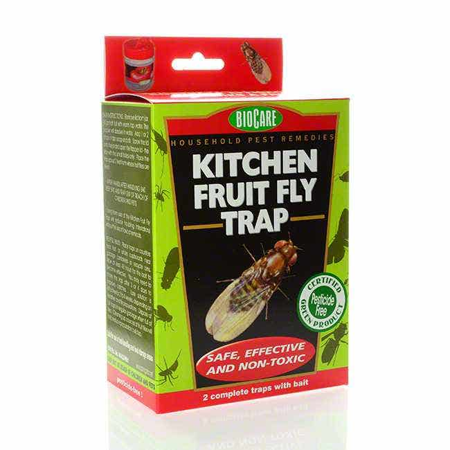 SPRINGSTAR INC S415 Kitchen Fruit Fly Trap