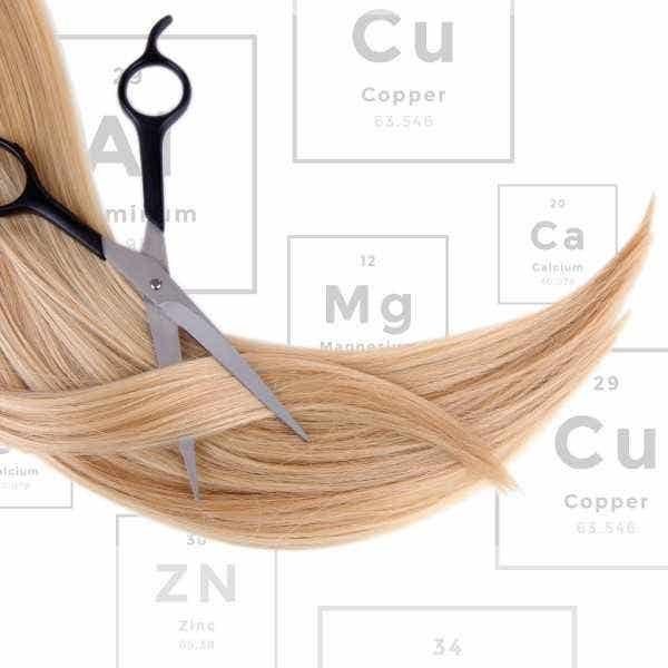 Healthy Goods Hair Mineral Analysis